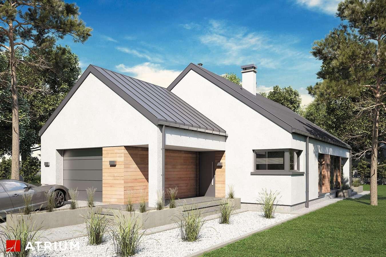 Projekty domów - Projekt domu parterowego PELIKAN SLIM VI - wizualizacja 1 - wersja lustrzana