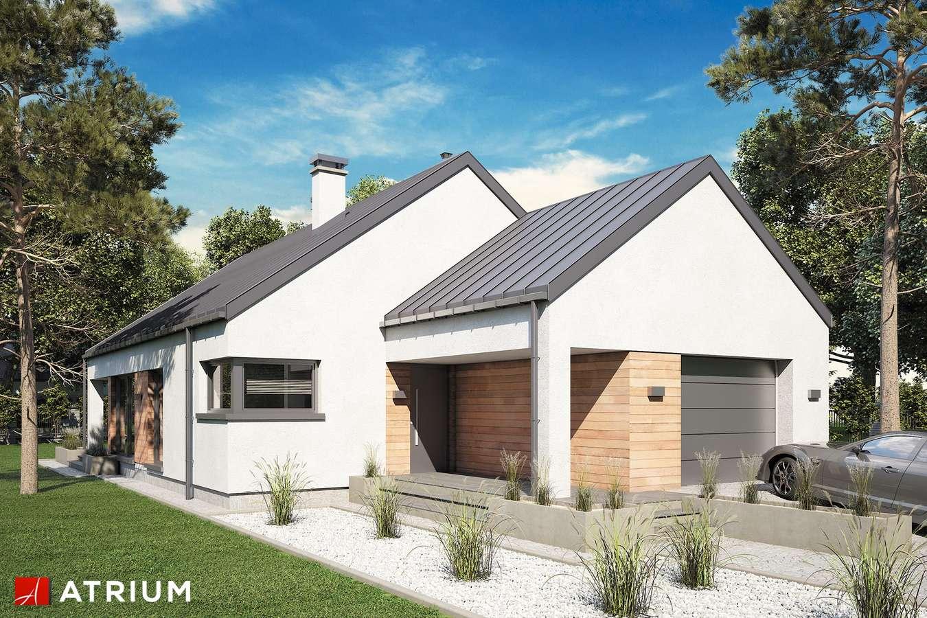 Projekty domów - Projekt domu parterowego PELIKAN SLIM VI - wizualizacja 1