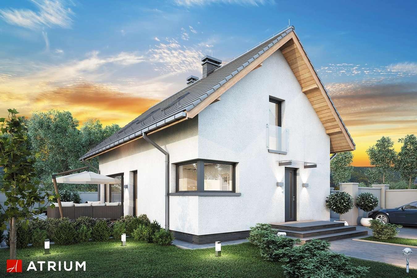 Projekty domów - Projekt domu z poddaszem FELIX IV - wizualizacja 1