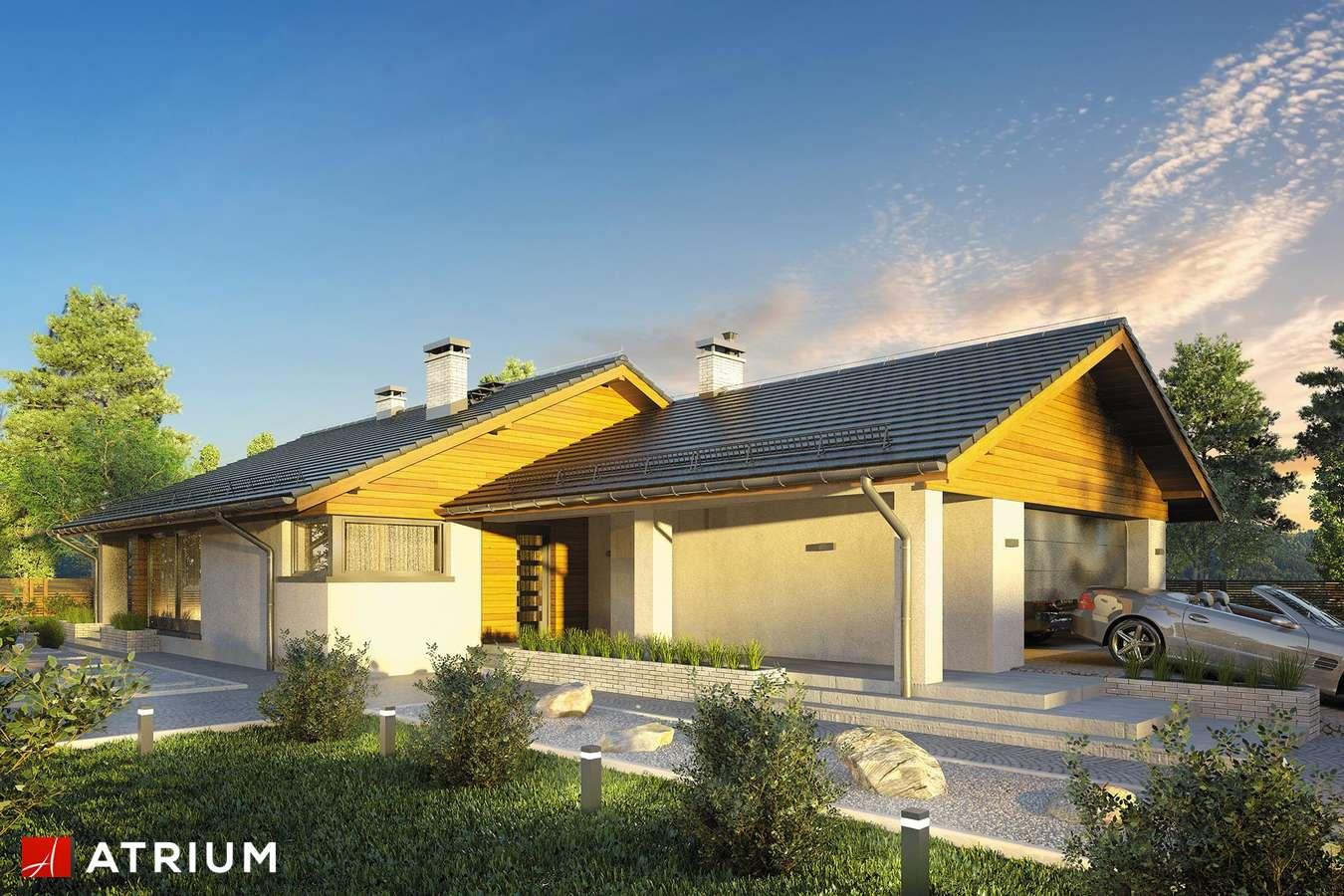Projekty domów - Projekt domu parterowego RODOS - wizualizacja 1 - wersja lustrzana