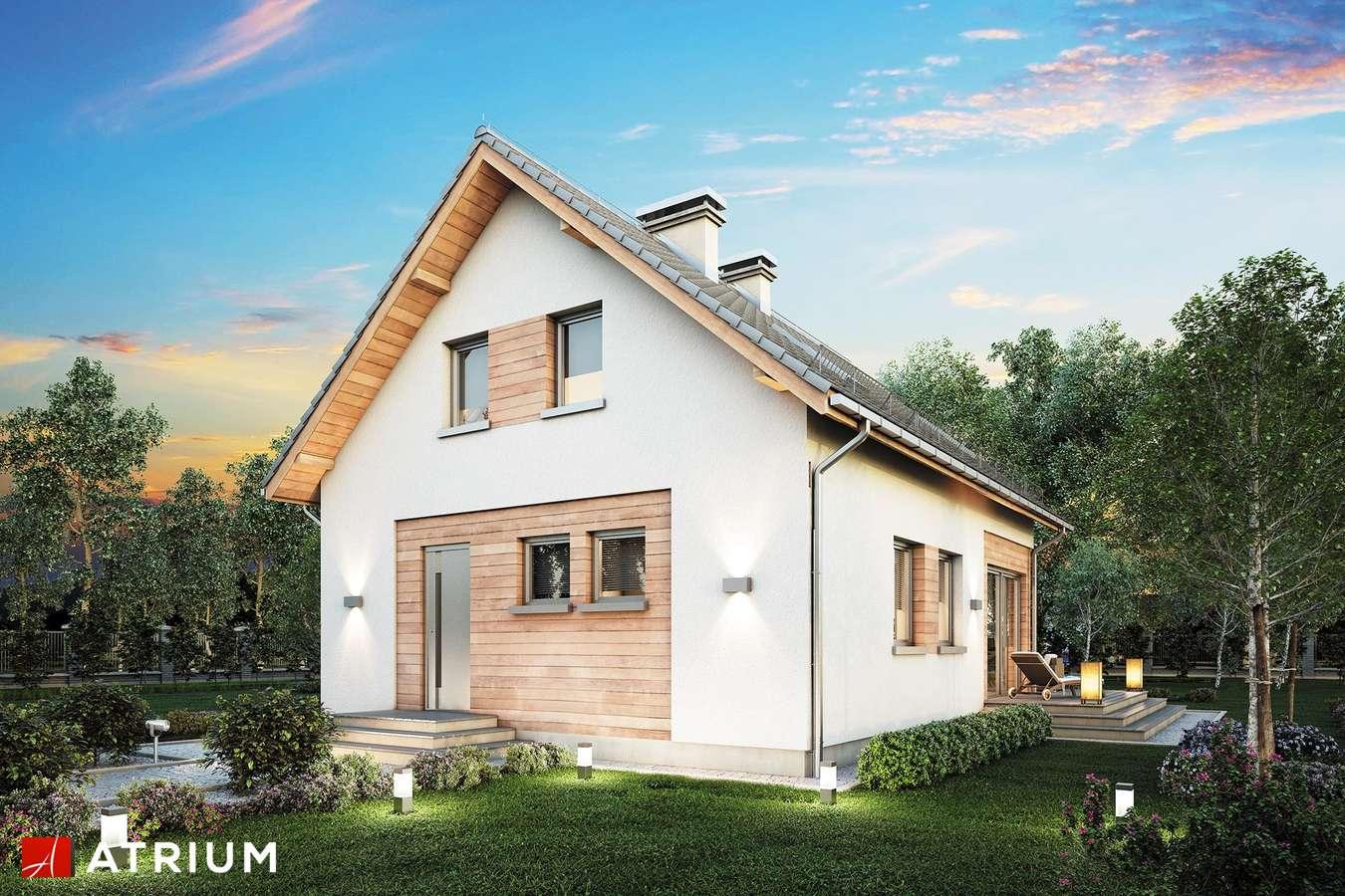 Projekty domów - Projekt domu z poddaszem BRAWO - wizualizacja 2