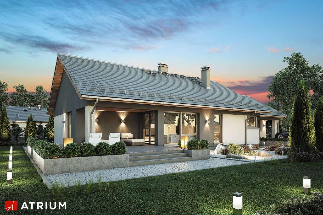 Projekty domów - Projekt domu parterowego CZAJKA - wizualizacja 2