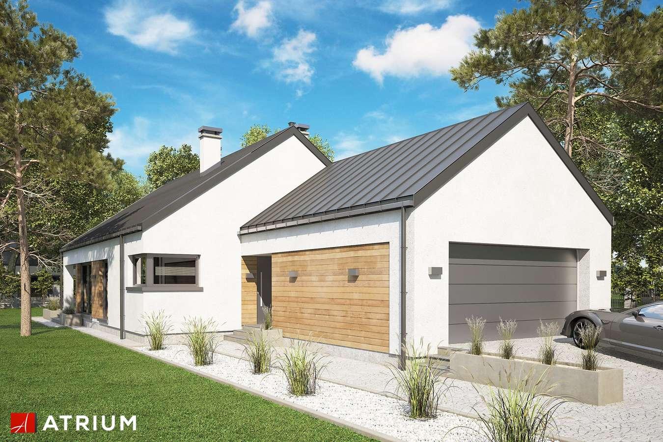 Projekty domów - Projekt domu parterowego PELIKAN SLIM VII BIS - wizualizacja 1