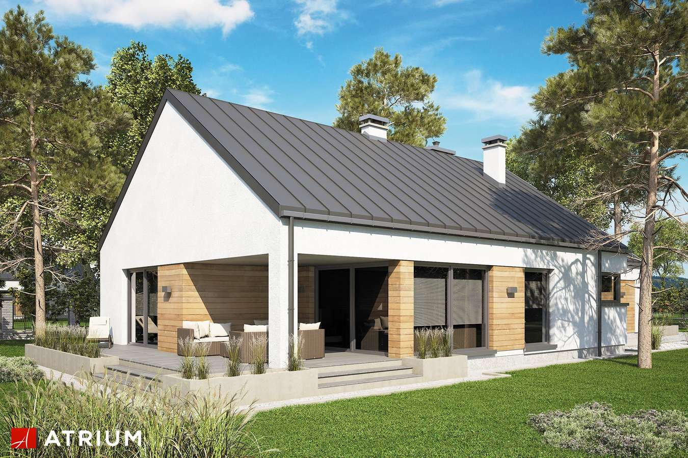 Projekty domów - Projekt domu parterowego PELIKAN SLIM VII BIS - wizualizacja 2