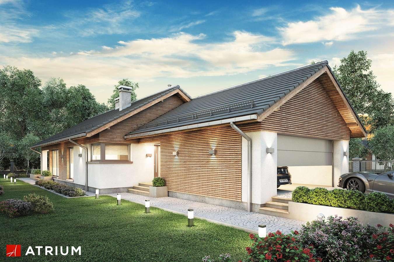 Projekty domów - Projekt domu parterowego PELIKAN SLIM VIII - wizualizacja 1