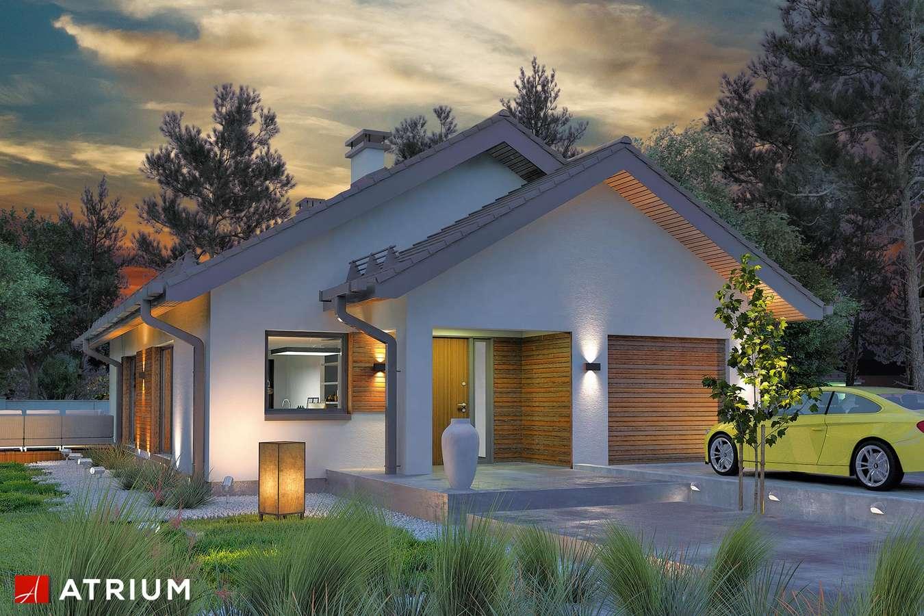 Projekty domów - Projekt domu parterowego SFINKS VIII - wizualizacja 2 - wersja lustrzana