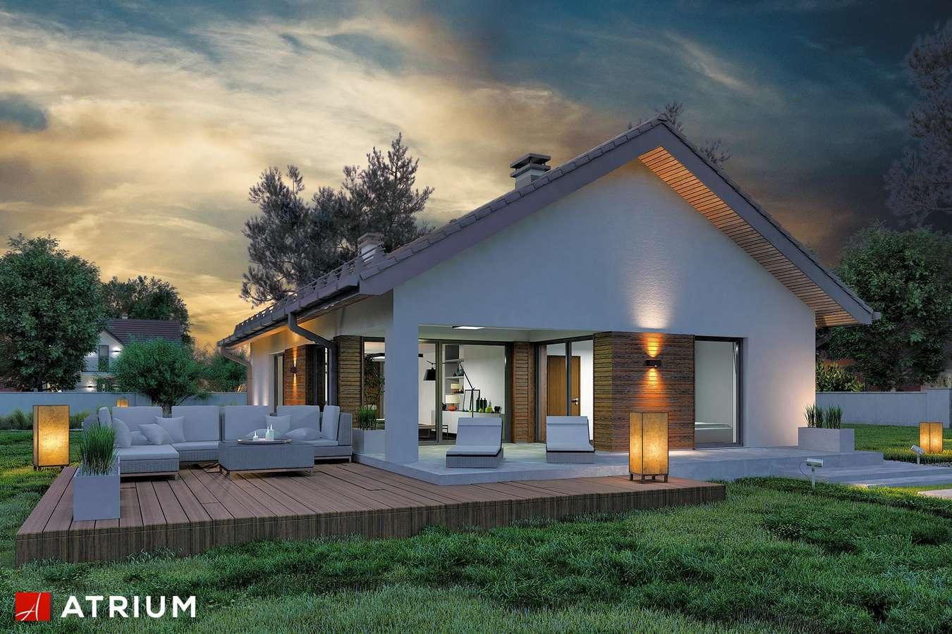 Projekty domów - Projekt domu parterowego SFINKS VIII - wizualizacja 1