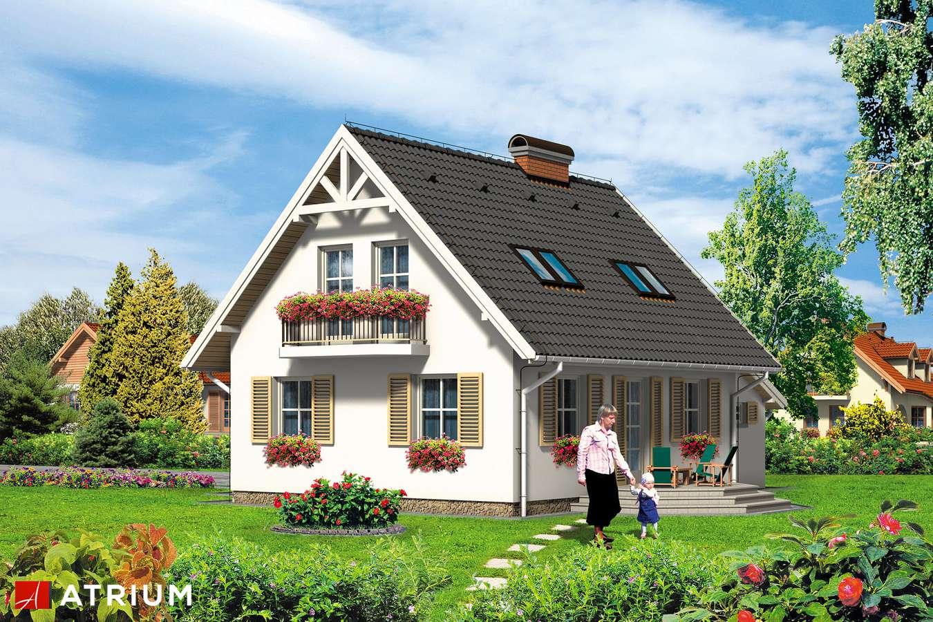 Projekty domów - Projekt domu z poddaszem NEMO - wizualizacja 2