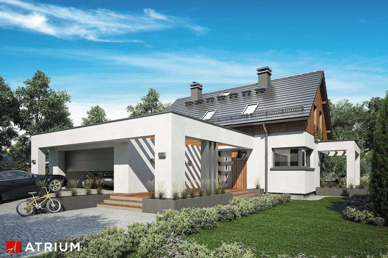 Projekty domów - Projekt domu z poddaszem SAMBA XIV - wizualizacja 1