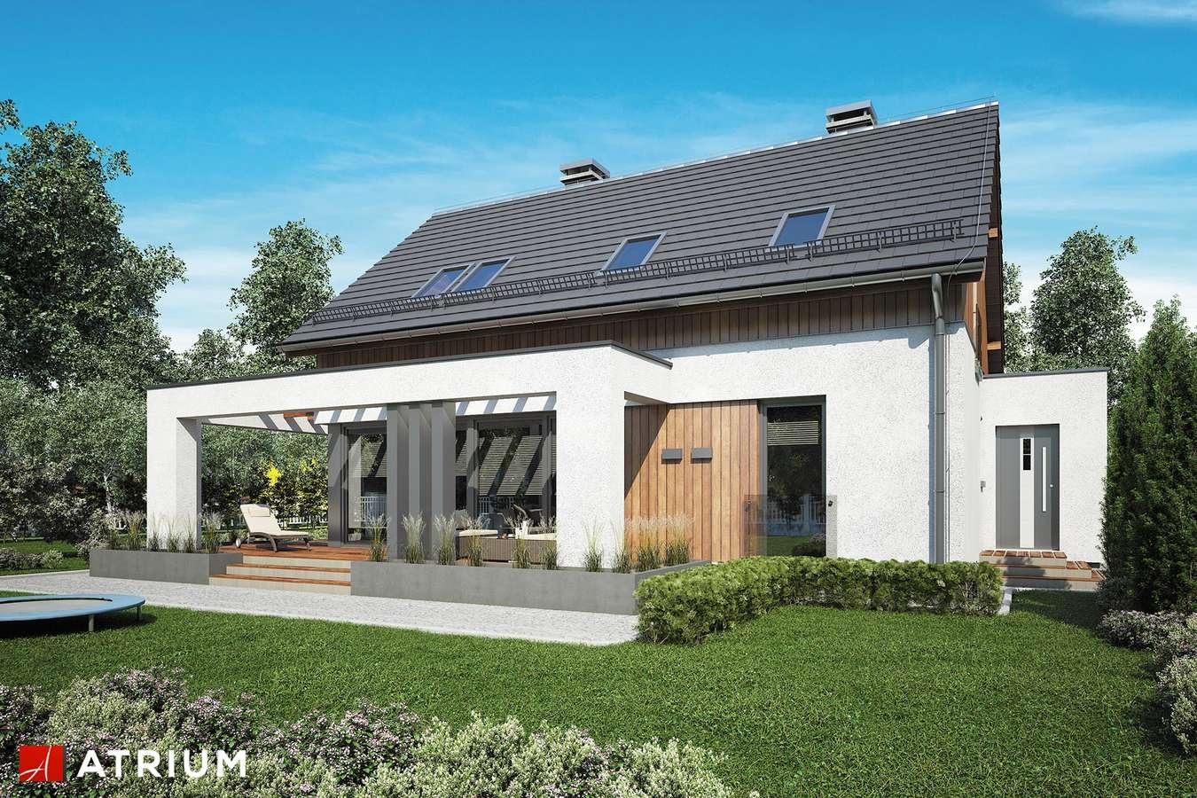 Projekty domów - Projekt domu z poddaszem SAMBA XIV - wizualizacja 2