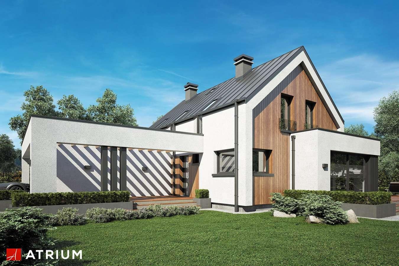 Projekty domów - Projekt domu z poddaszem POLARIS - wizualizacja 1