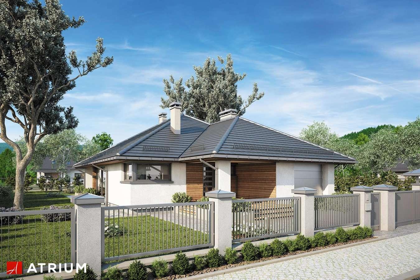 Projekty domów - Projekt domu parterowego KRASKA - wizualizacja 1
