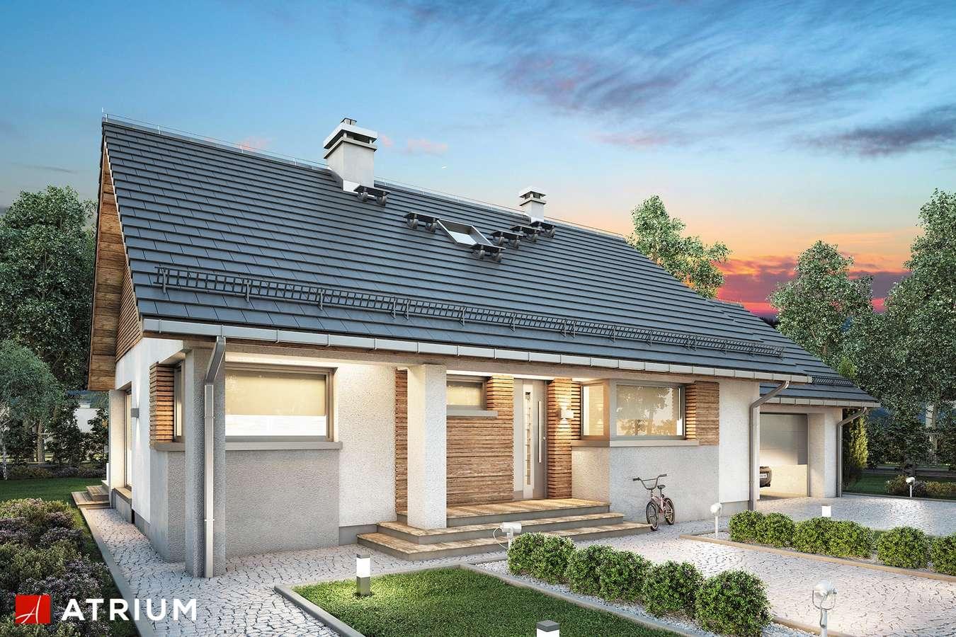 Projekty domów - Projekt domu parterowego RICARDO LIFT II - wizualizacja 1 - wersja lustrzana