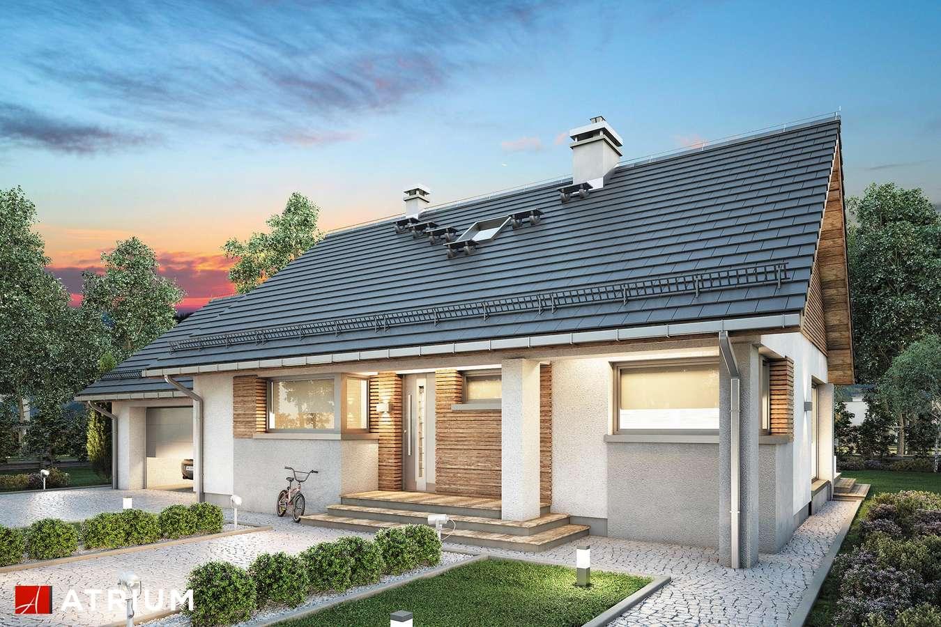 Projekty domów - Projekt domu parterowego RICARDO LIFT II - wizualizacja 1