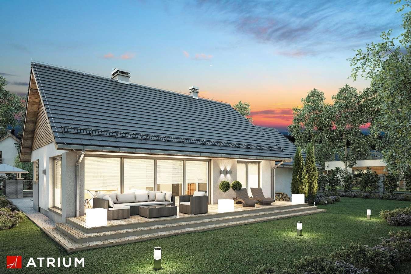 Projekty domów - Projekt domu parterowego RICARDO LIFT II - wizualizacja 2