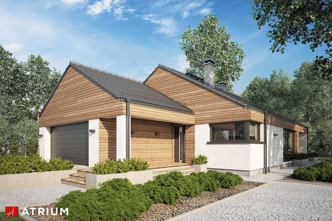 Projekty domów - Projekt domu parterowego PLISZKA V BIS - wizualizacja 1 - wersja lustrzana