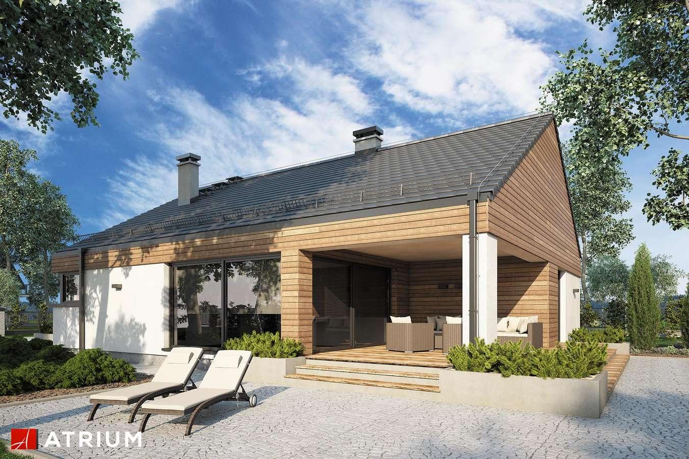 Projekty domów - Projekt domu parterowego PLISZKA V BIS - wizualizacja 2 - wersja lustrzana