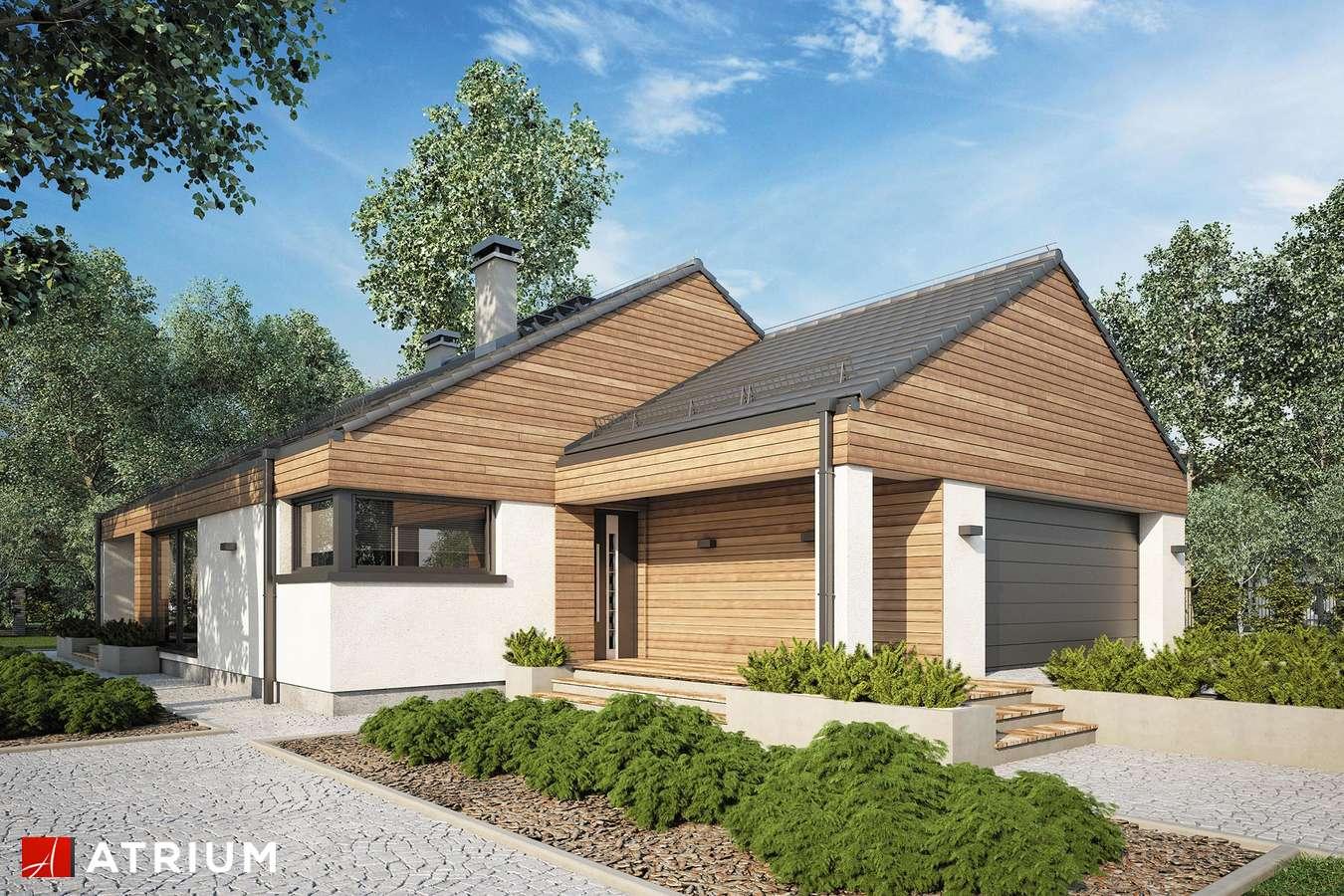Projekty domów - Projekt domu parterowego PLISZKA V BIS - wizualizacja 1