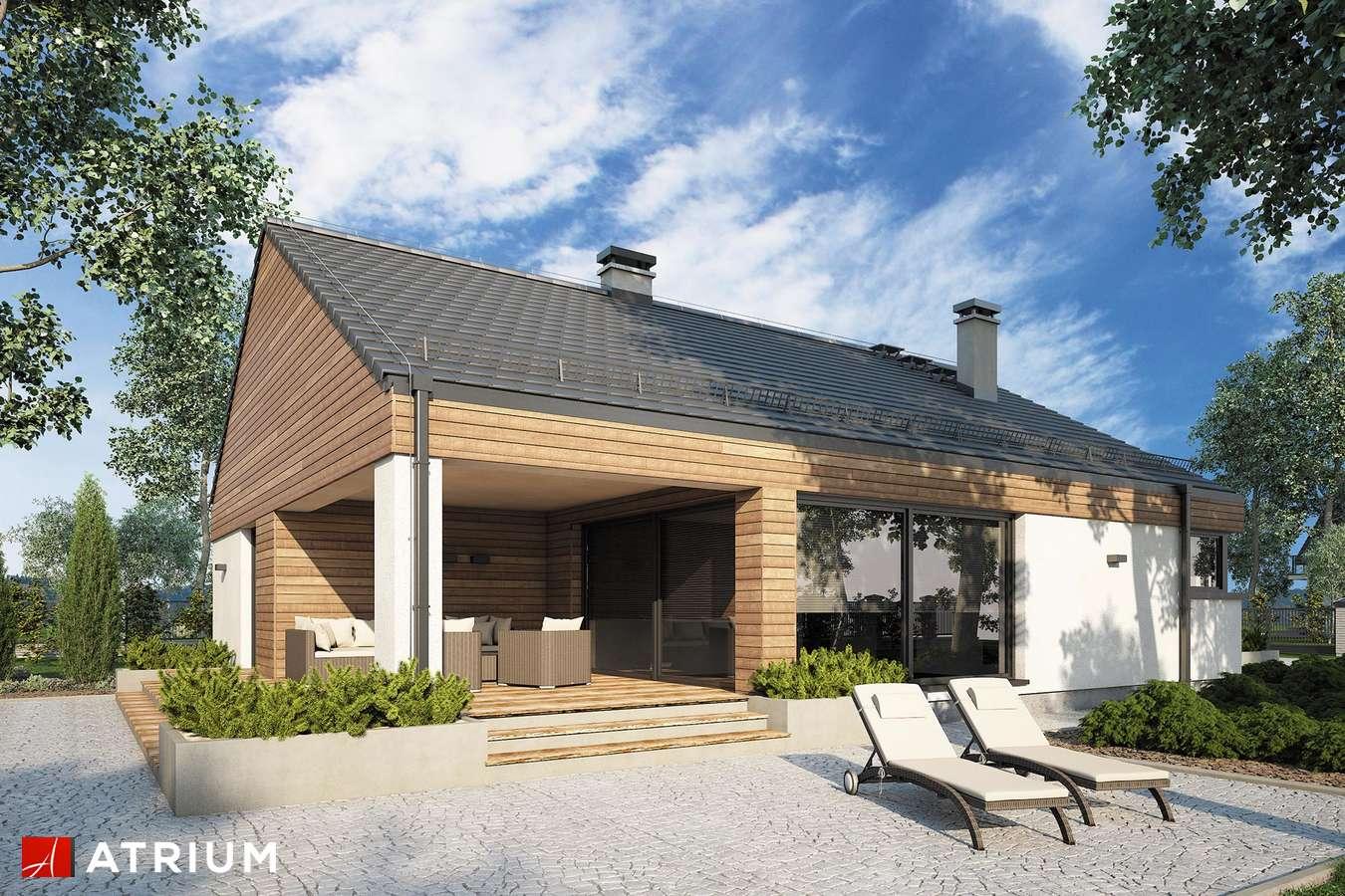 Projekty domów - Projekt domu parterowego PLISZKA V BIS - wizualizacja 2
