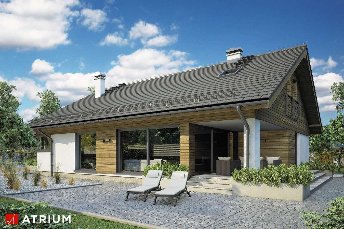 Projekty domów - Projekt domu z poddaszem PLISZKA VIII - wizualizacja 1 - wersja lustrzana