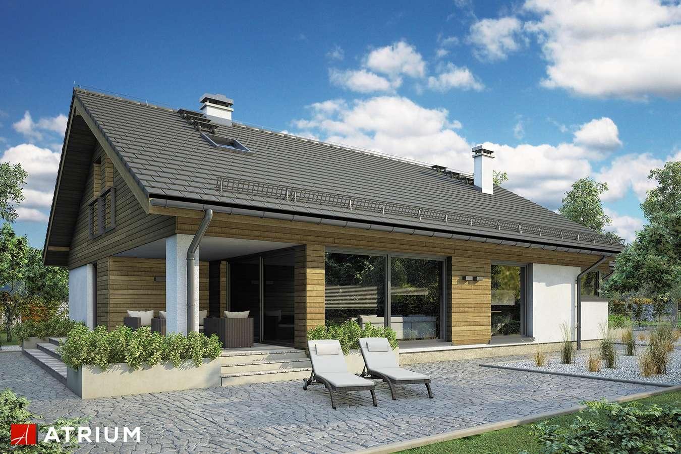 Projekty domów - Projekt domu z poddaszem PLISZKA VIII - wizualizacja 1