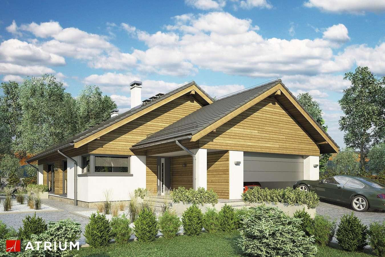Projekty domów - Projekt domu z poddaszem PLISZKA VIII - wizualizacja 2