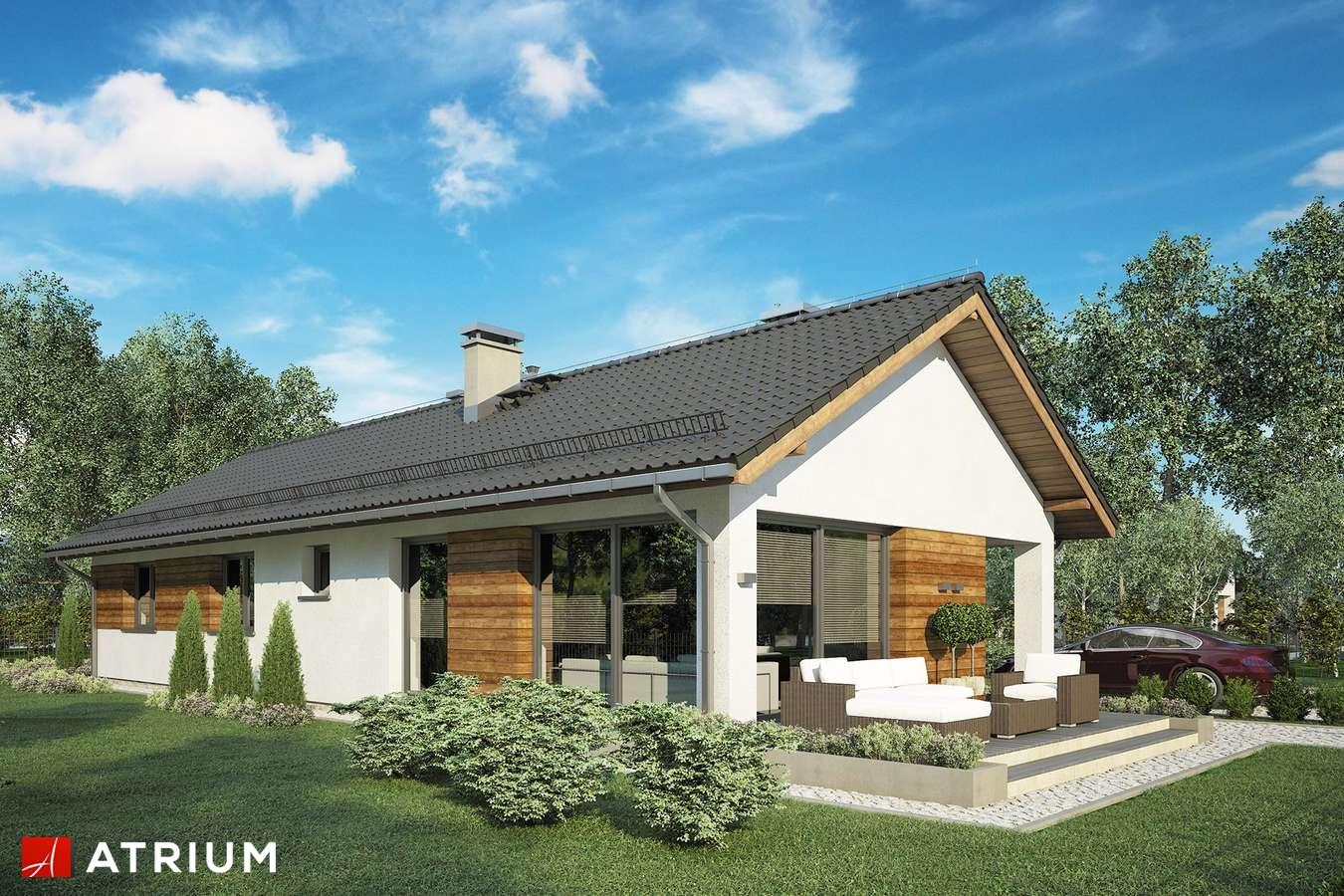 Projekty domów - Projekt domu parterowego OLIMP - wizualizacja 2