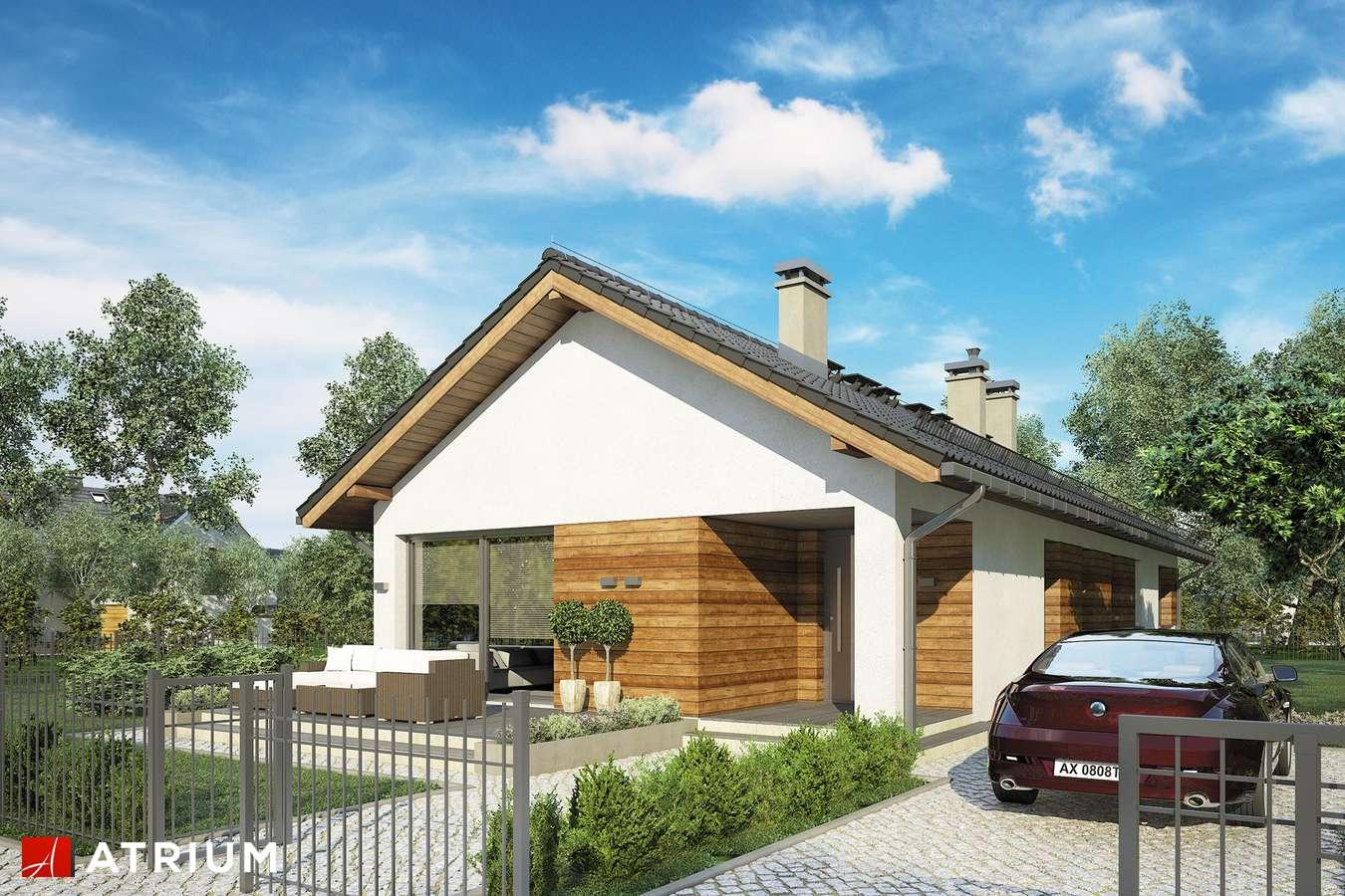 Projekty domów - Projekt domu parterowego OLIMP - wizualizacja 1