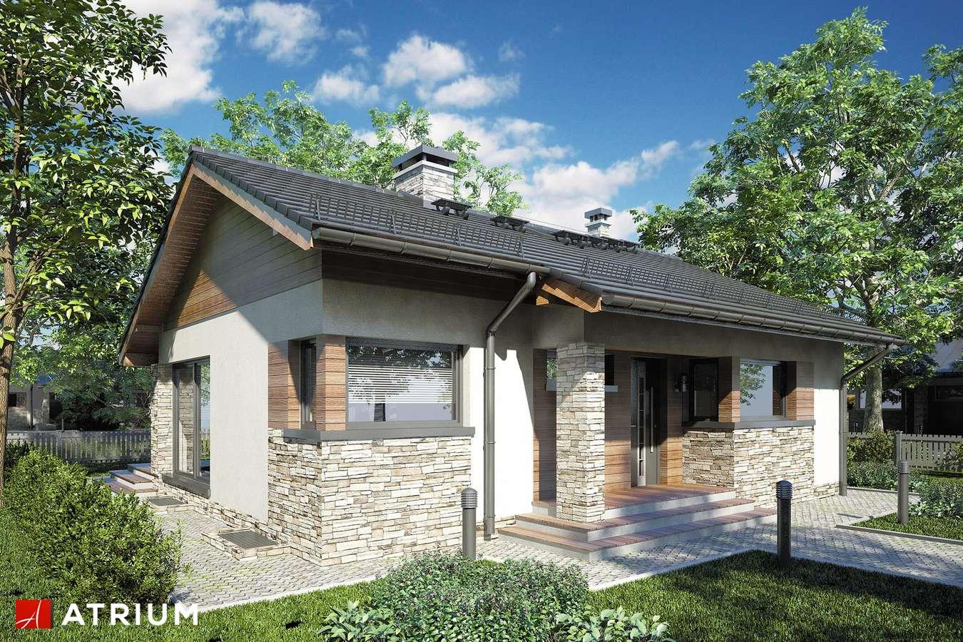 Projekty domów - Projekt domu parterowego RICARDO PLUS SZ - wizualizacja 1 - wersja lustrzana