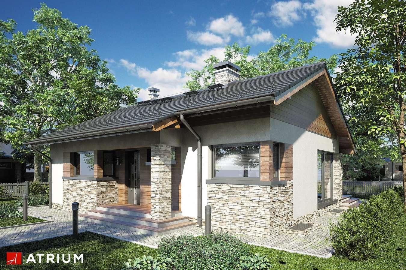 Projekty domów - Projekt domu parterowego RICARDO PLUS SZ - wizualizacja 1