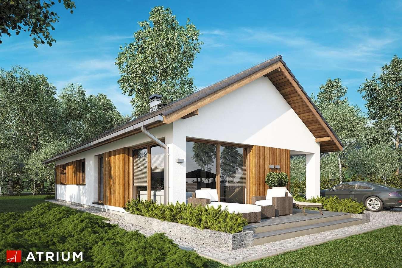 Projekty domów - Projekt domu parterowego OLIMP II - wizualizacja 1