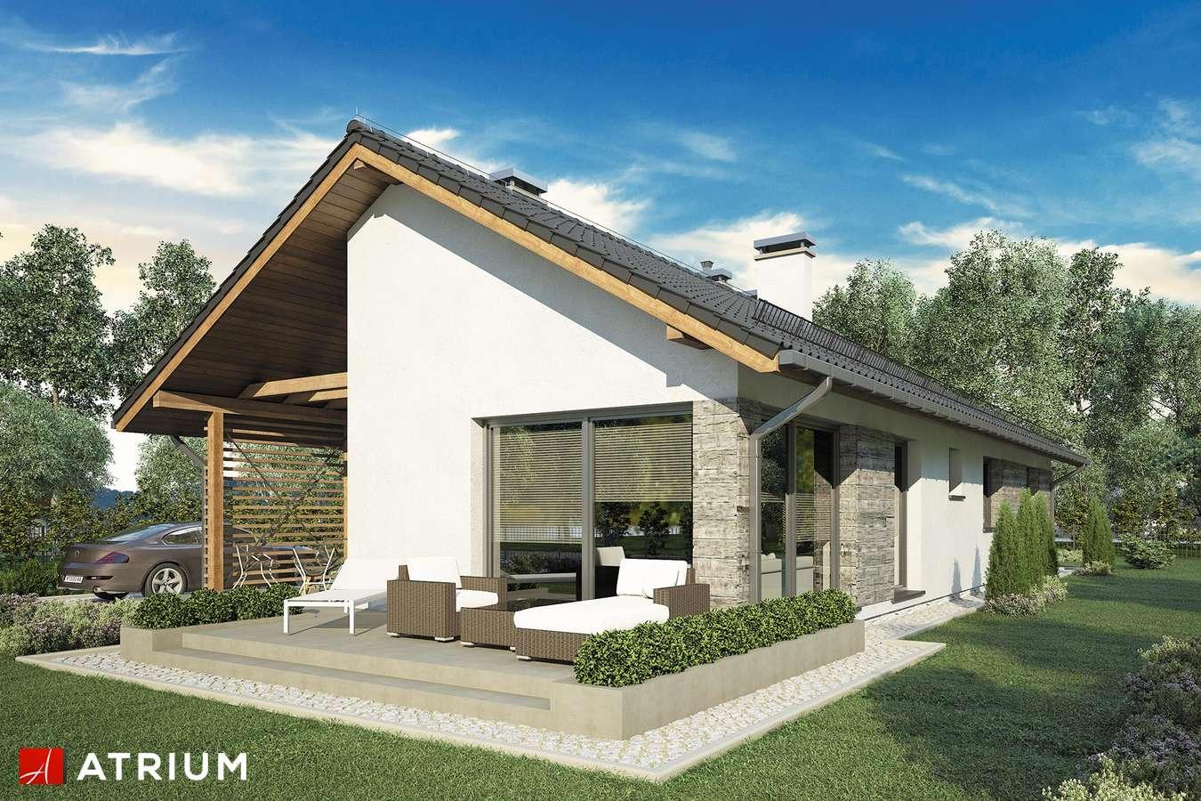 Projekty domów - Projekt domu parterowego OLIMPIA - wizualizacja 1 - wersja lustrzana