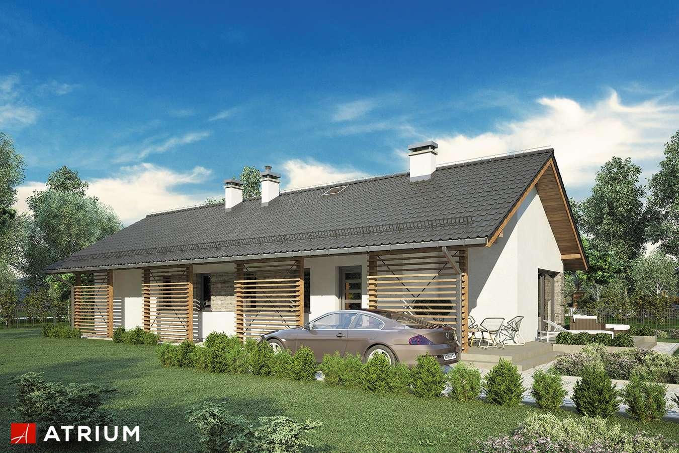 Projekty domów - Projekt domu parterowego OLIMPIA - wizualizacja 2 - wersja lustrzana