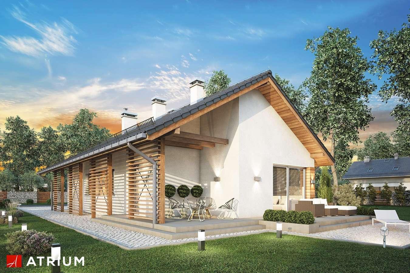 Projekty domów - Projekt domu parterowego OLIMPIA II - wizualizacja 1 - wersja lustrzana