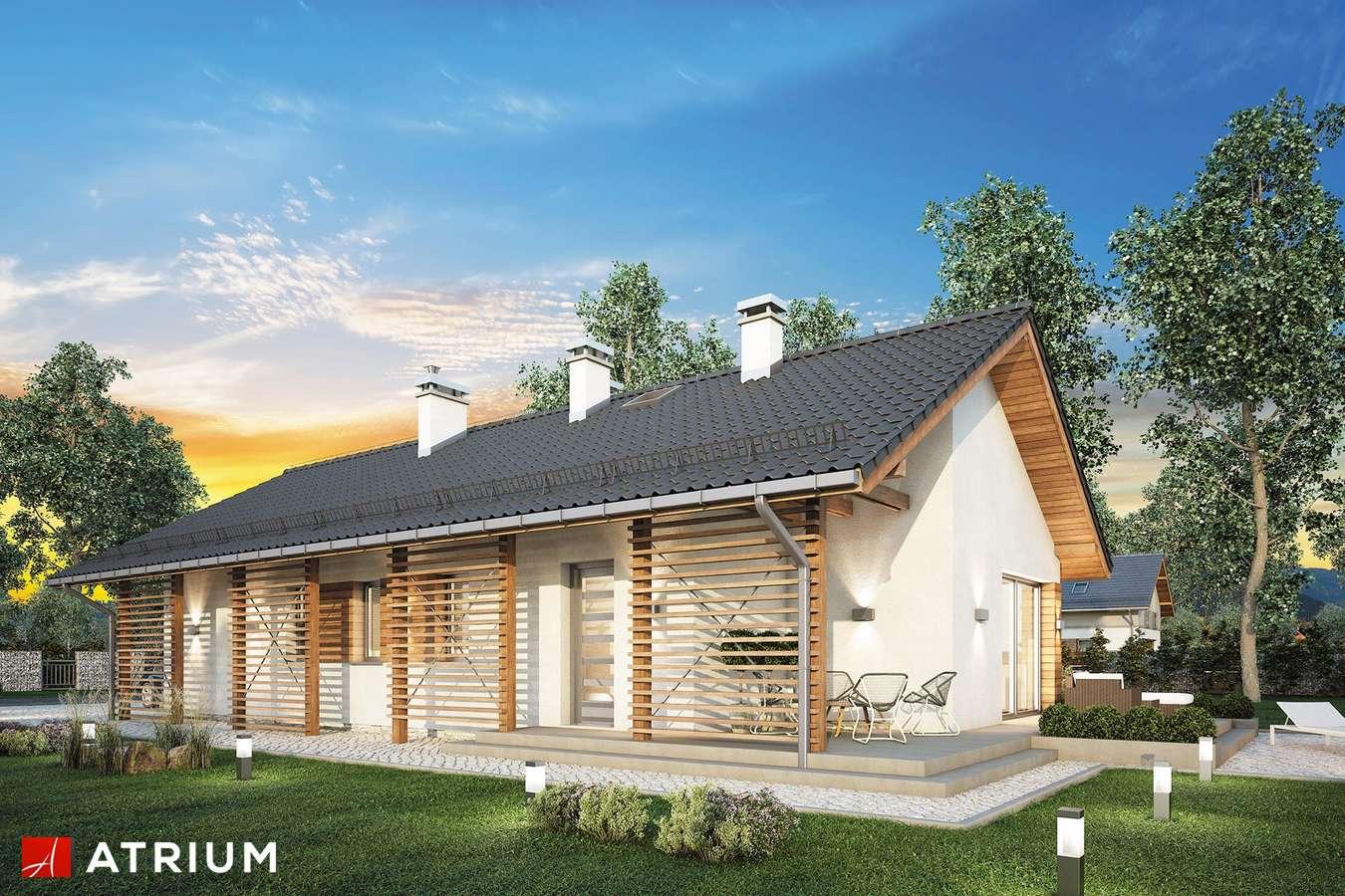 Projekty domów - Projekt domu parterowego OLIMPIA II - wizualizacja 2 - wersja lustrzana