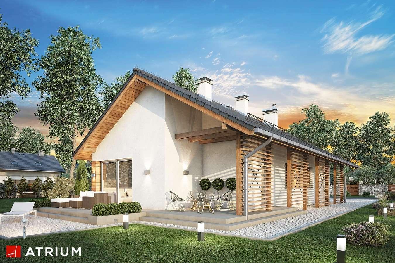 Projekty domów - Projekt domu parterowego OLIMPIA II - wizualizacja 1