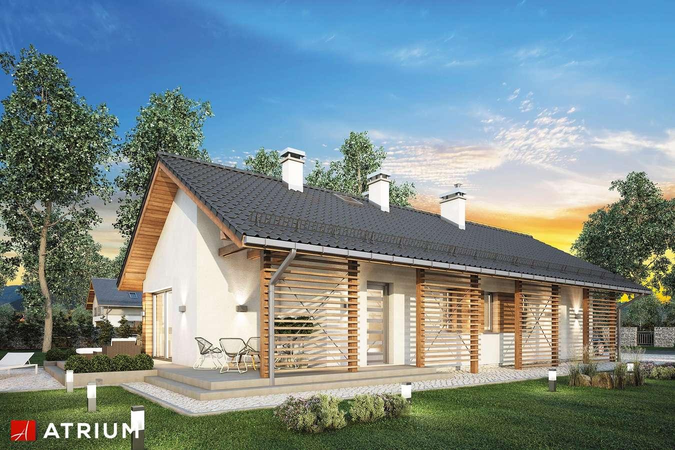 Projekty domów - Projekt domu parterowego OLIMPIA II - wizualizacja 2