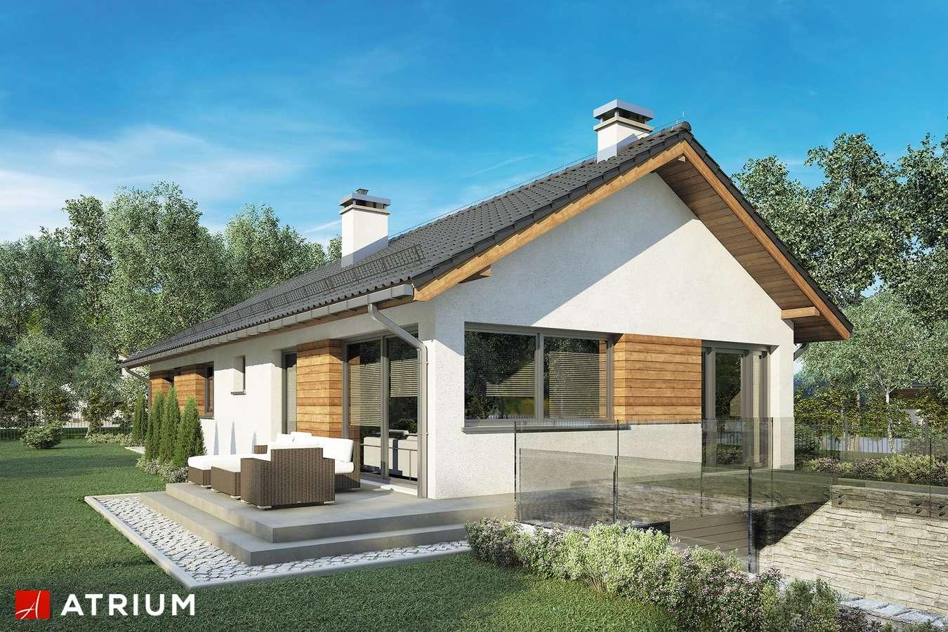 Projekty domów - Projekt domu parterowego OLIMP PLUS - wizualizacja 1