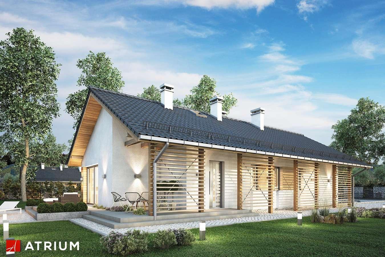 Projekty domów - Projekt domu parterowego OLIMPIA PLUS - wizualizacja 1