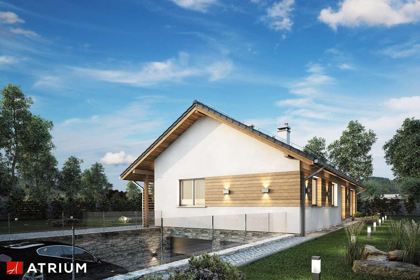 Projekty domów - Projekt domu parterowego OLIMPIA PLUS - wizualizacja 2