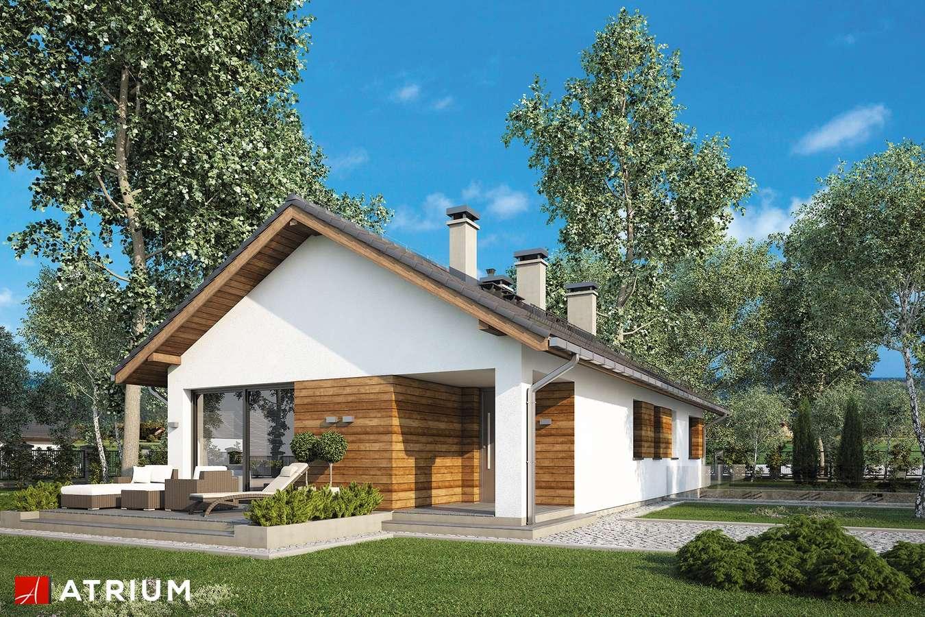 Projekty domów - Projekt domu parterowego OLIMP PLUS II - wizualizacja 1