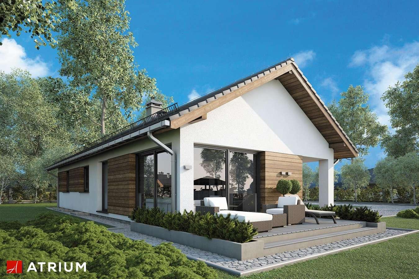 Projekty domów - Projekt domu parterowego OLIMP PLUS II - wizualizacja 2