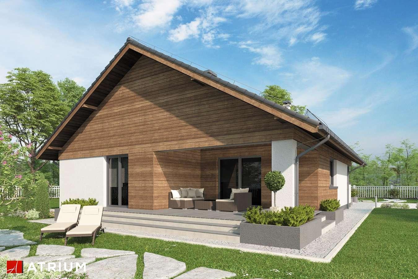 Projekty domów - Projekt domu parterowego KOS X - wizualizacja 2