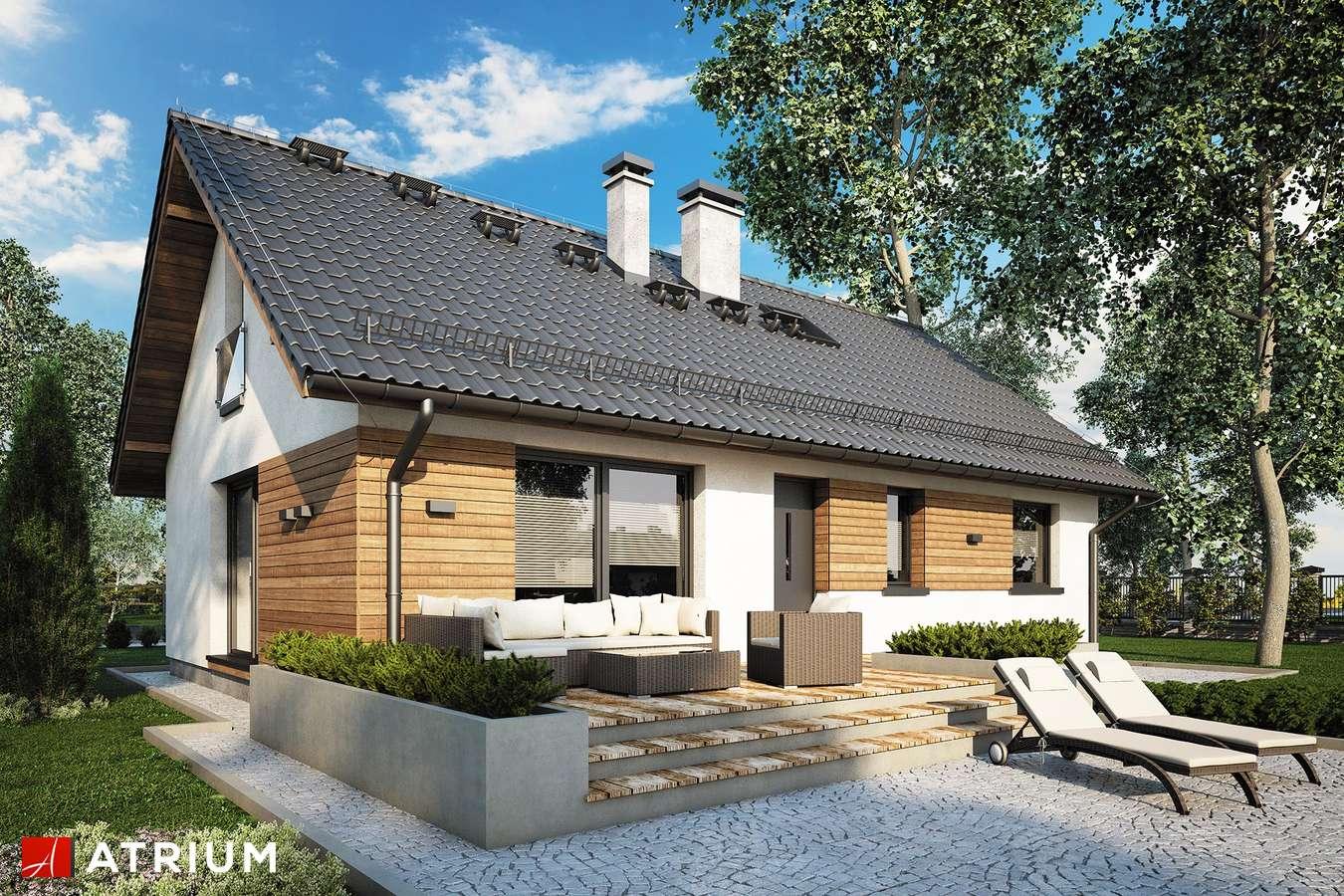 Projekty domów - Projekt domu z poddaszem AURORA MIDI III - wizualizacja 1
