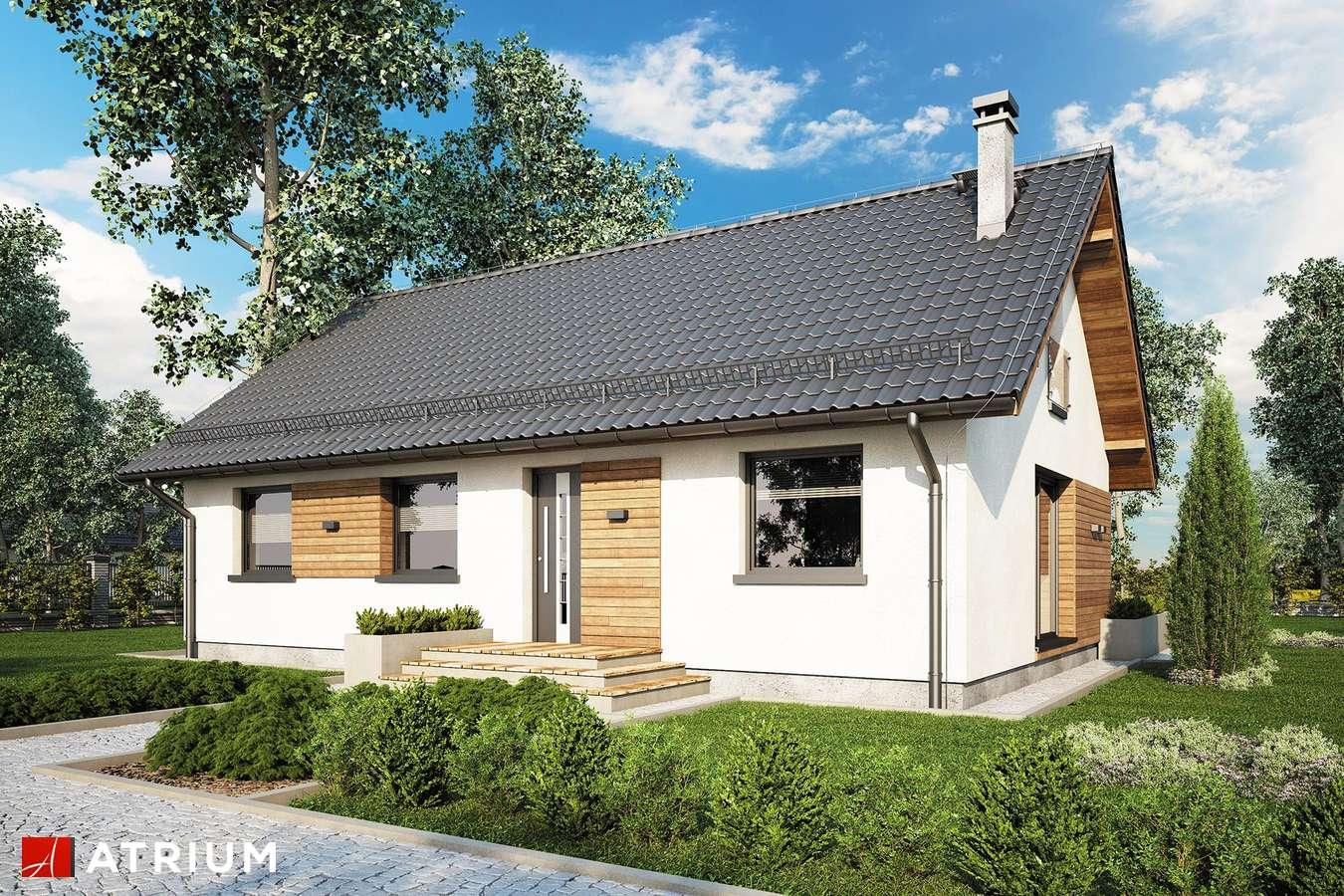 Projekty domów - Projekt domu z poddaszem AURORA MIDI III - wizualizacja 2