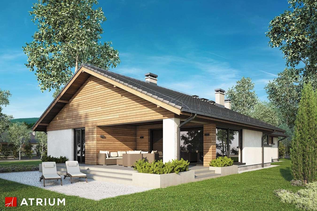 Projekty domów - Projekt domu parterowego IKARIA - wizualizacja 2