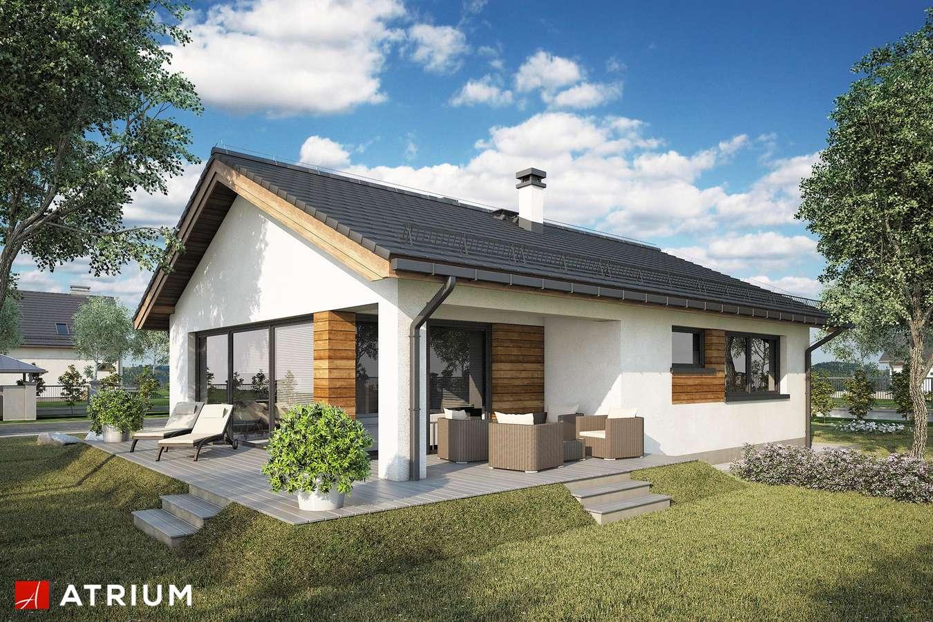 Projekty domów - Projekt domu parterowego WEKTOR IX - wizualizacja 1