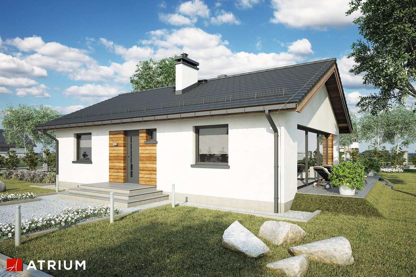 Projekty domów - Projekt domu parterowego WEKTOR IX - wizualizacja 2
