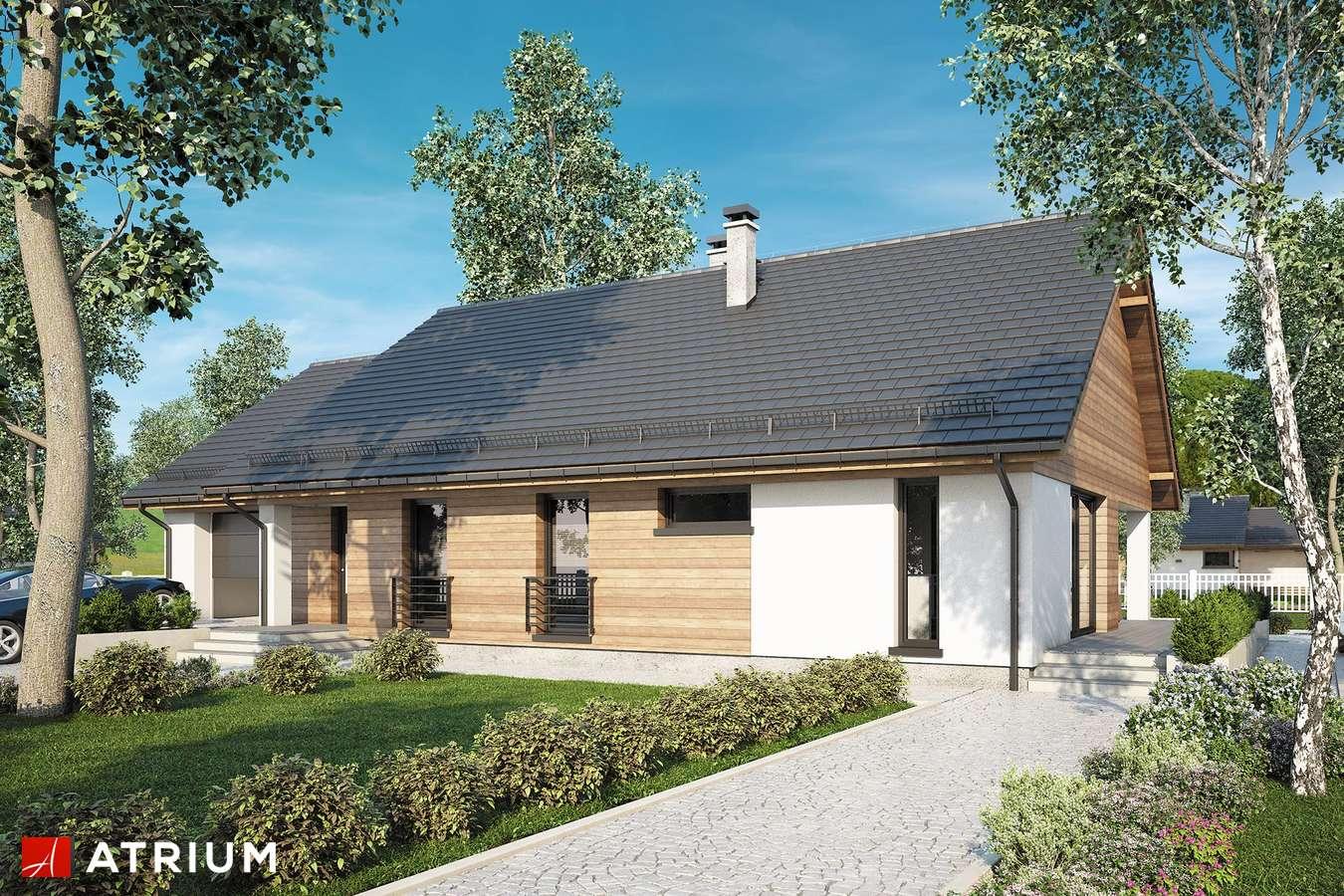 Projekty domów - Projekt domu parterowego NEBRASKA - wizualizacja 1