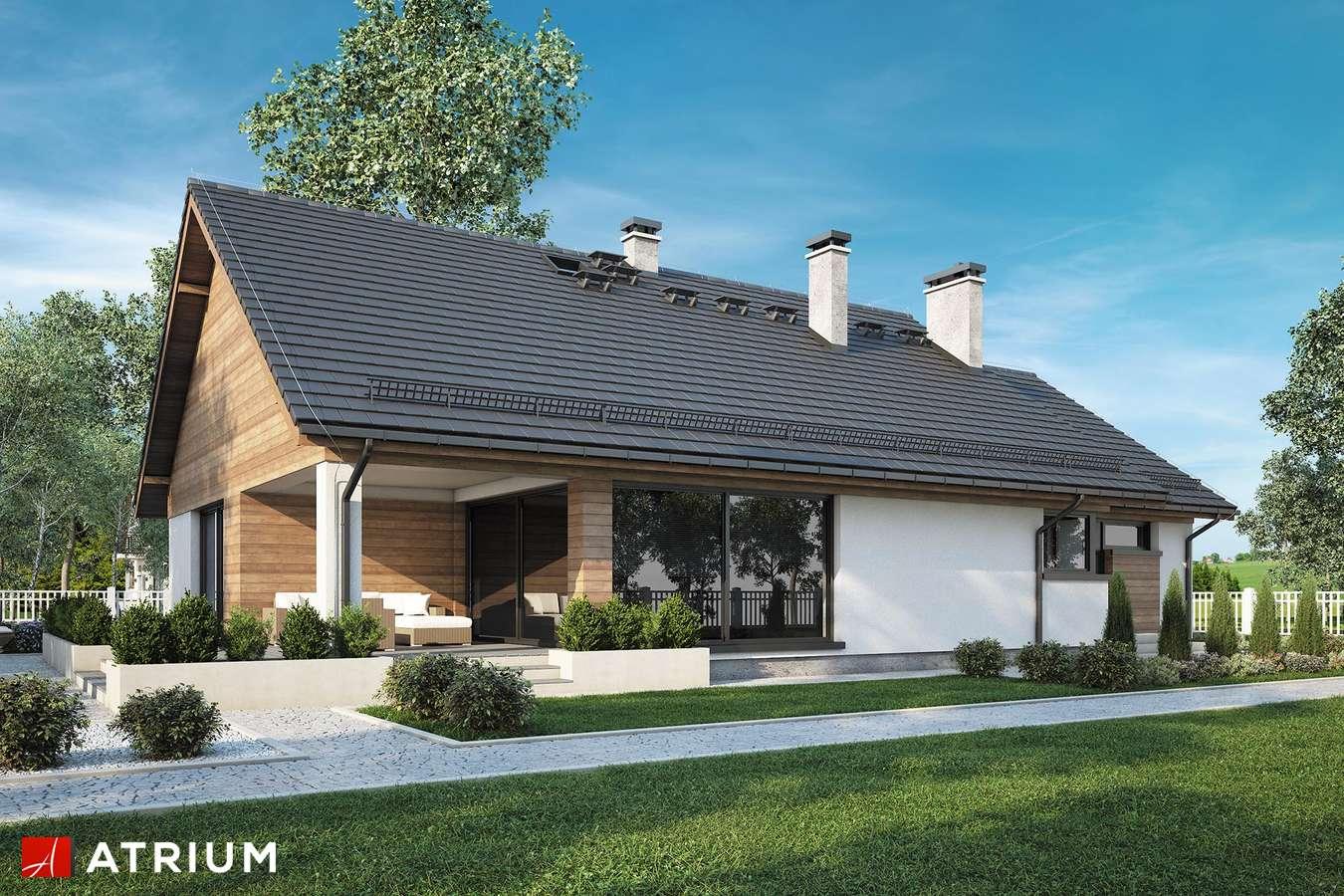 Projekty domów - Projekt domu parterowego NEBRASKA - wizualizacja 2